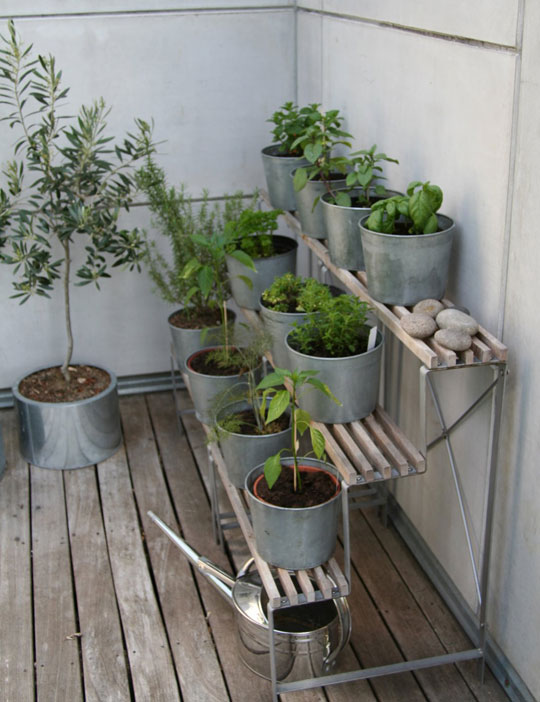 garden for my apartment yes please
